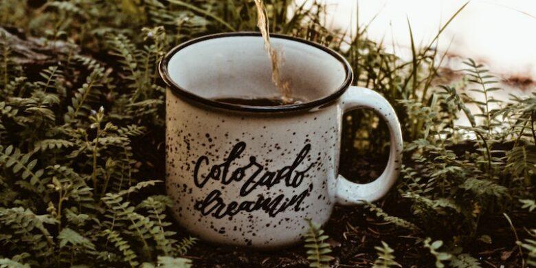 colorado-mug-moving-to-colo